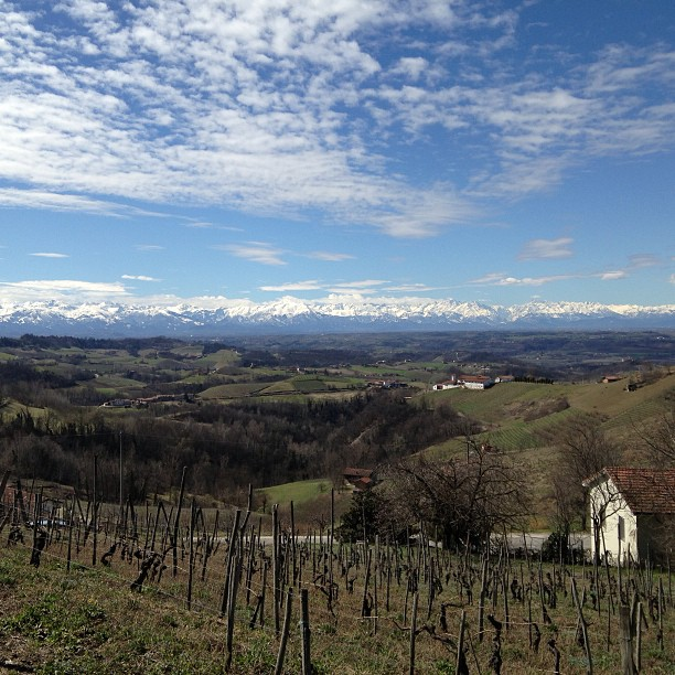 The #Langhe  vineyards, the #Alps, & #cloudporn #italy March 31, 2013 at 0449PM