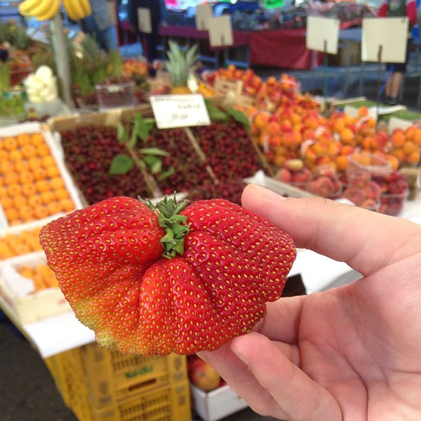 Found gigantic heart-size #strawberry at our Italian street market. #Italy #fragole June 11, 2013 at 0929AM
